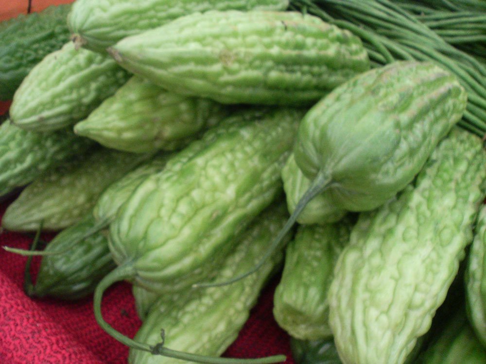 Ampalaya (bittermelon) (Photo by Roland Tanglao)
