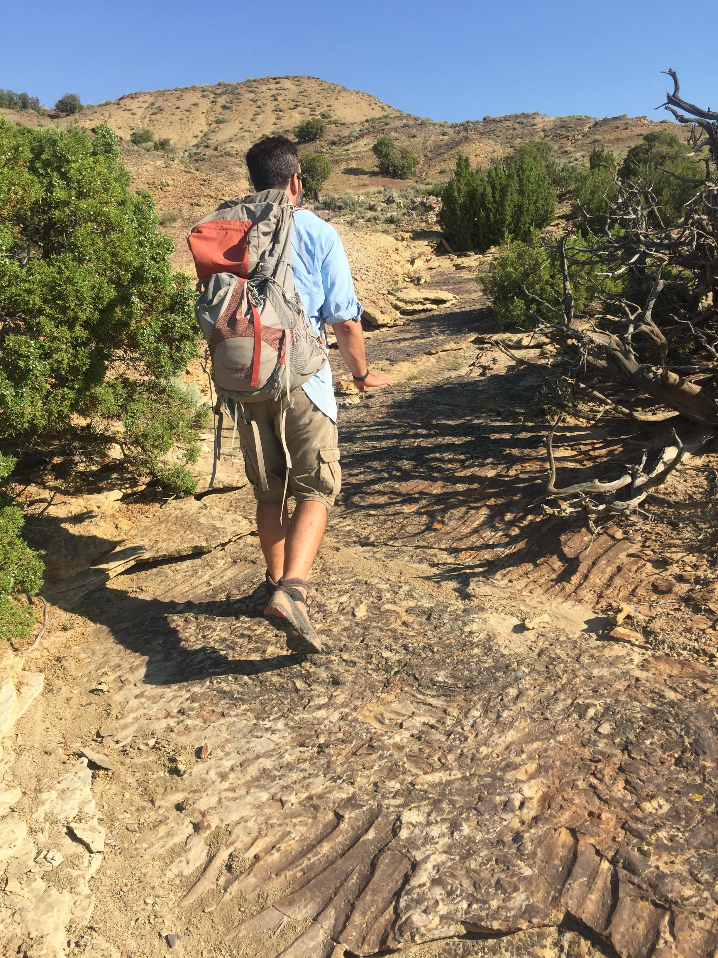 Hiking through the badlands