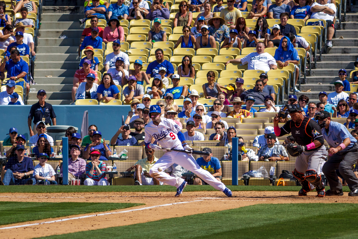 Dee Gordan laying a bunt down against the Marlins last year at Dodgers Stadium