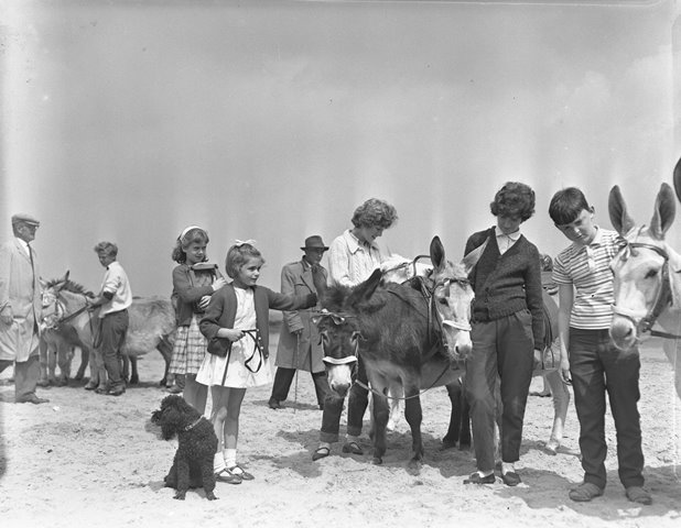 """Donkey rides on the beach  """"Dad puts me on the donkey. Well only four or five steps into the trot round, I don't know what I did, I've no idea to this day, but I must've worked myself around and ended up hanging onto the dear donkey by its tail."""" Doreen Hicknell, Poppy Centre, Anfield"""
