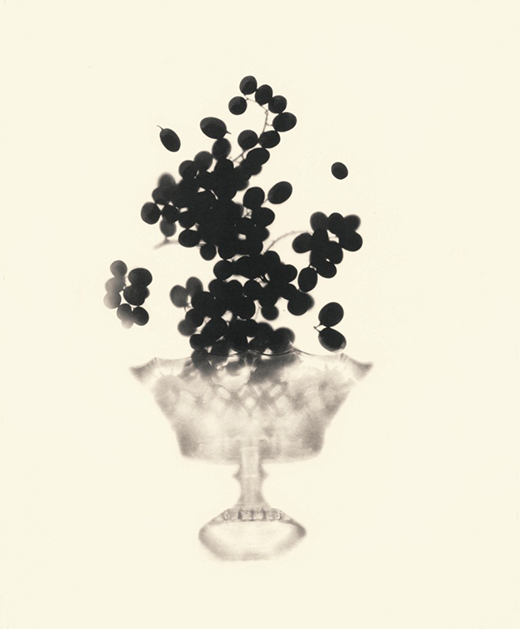 Cornelia Parker, Still Life with Levitating Grapes (2015).Polymer photogravure etching on Fabriano Tiepolo Bianco 290 gsm paper.72.2 × 54 cm.Edition of 15.Courtesy Cornelia Parker and Alan Cristea Gallery, London