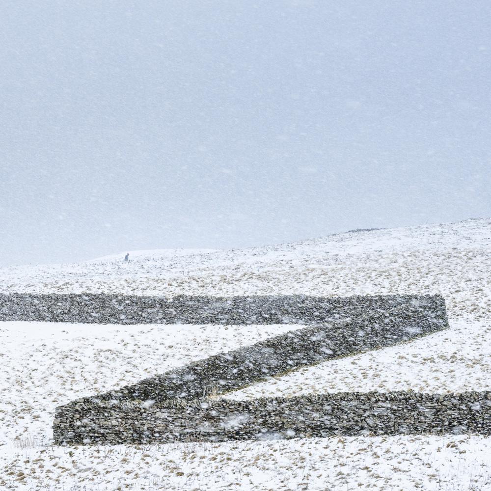 Lizzie Shepherd - Zigzag, Wensleydale, North Yorkshire, England