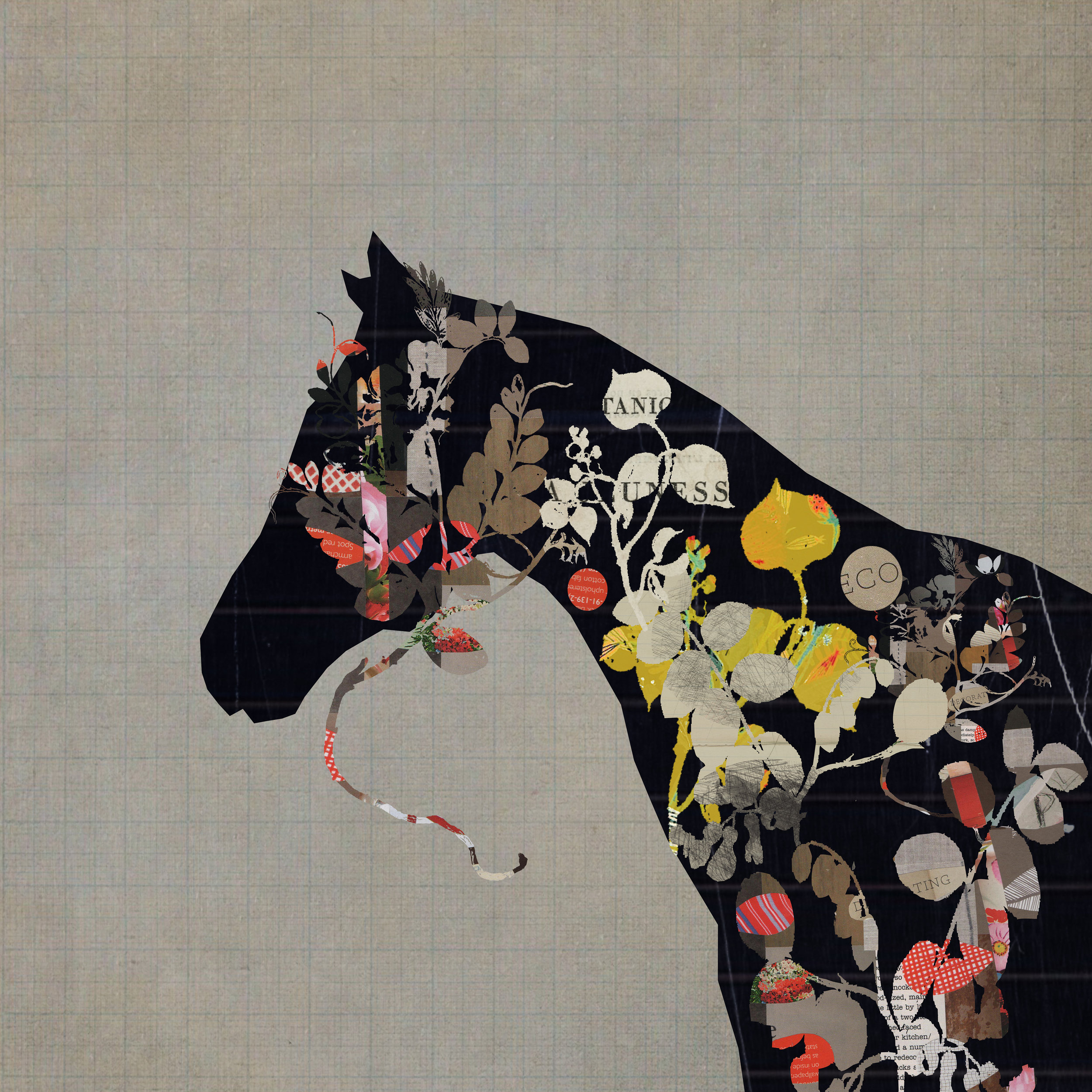 horse 1 sm.jpg