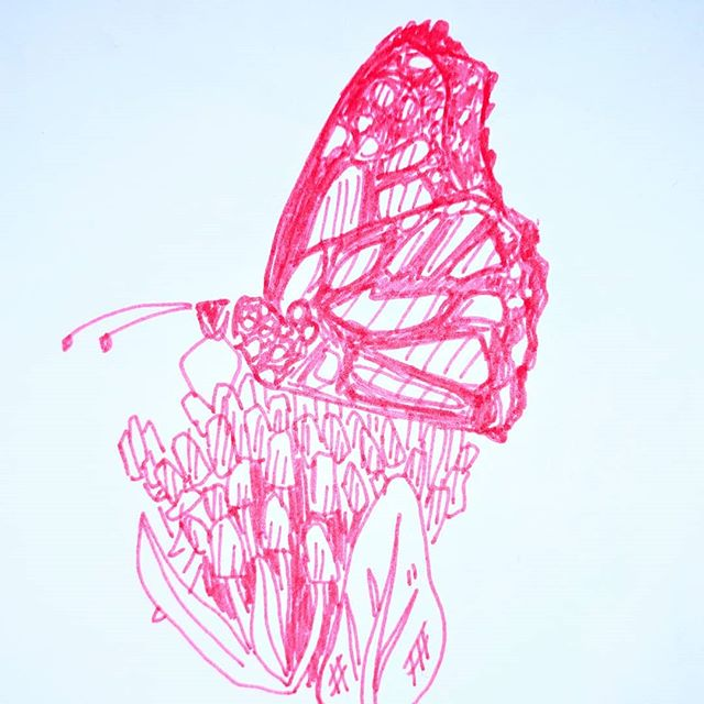 #Inktober Day 11: A very important Monarch butterfly.