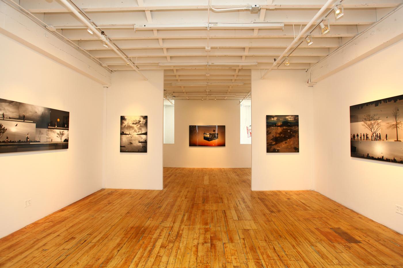 Emmanuel Fremin Gallery (New York Chelsea)2012