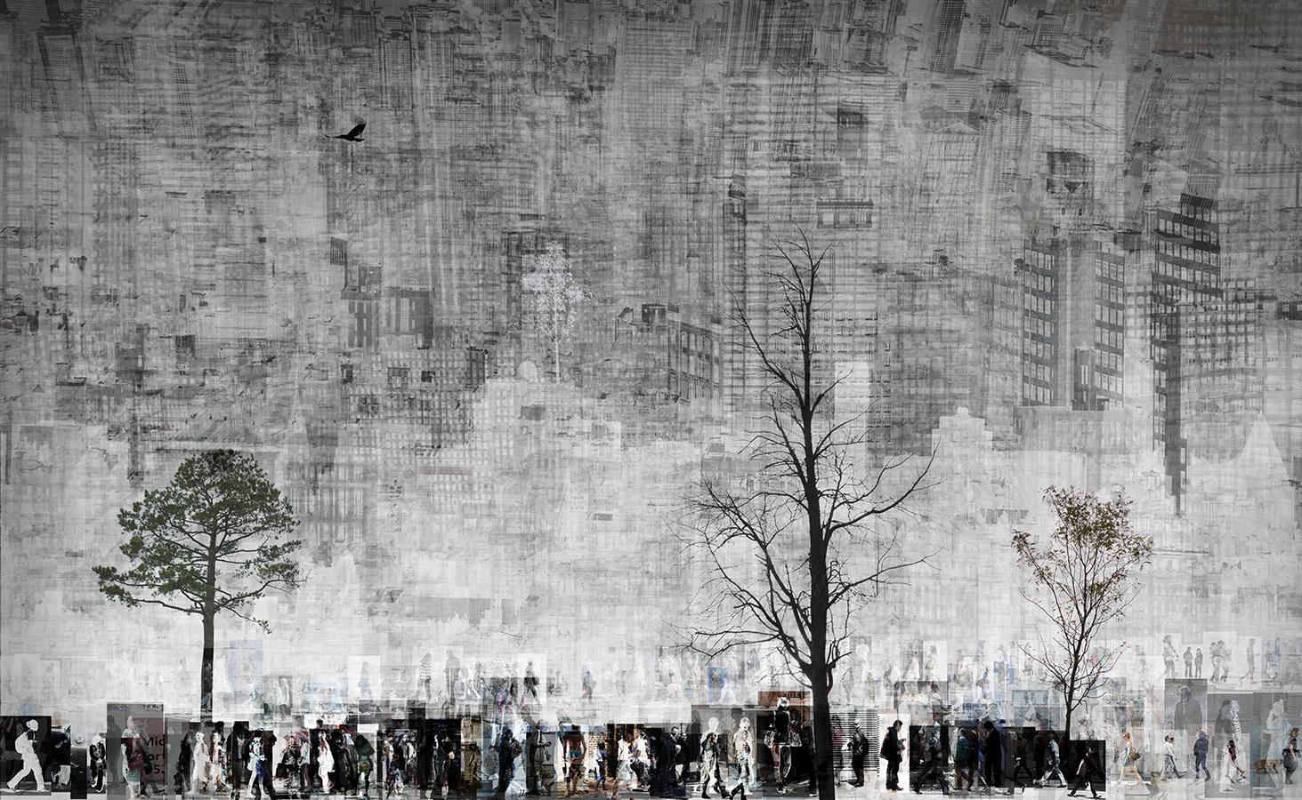 Tree & Building_2015