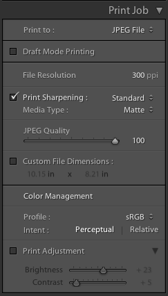 In the Print Job section I select Print to: JPEG file.