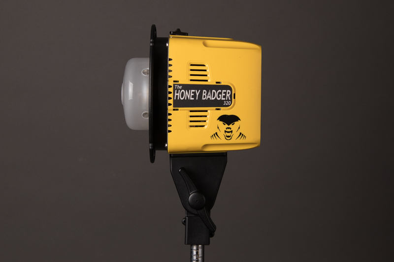 Interfit Honey Badger studio strobe