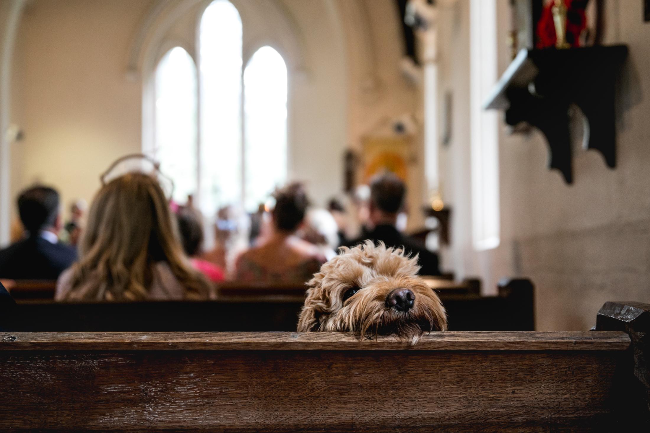 EDEN BARN WEDDING PHOTOGRAPHER-17B.jpg