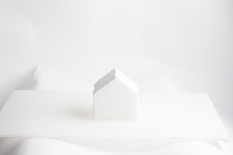 PaperHouse0009.jpg