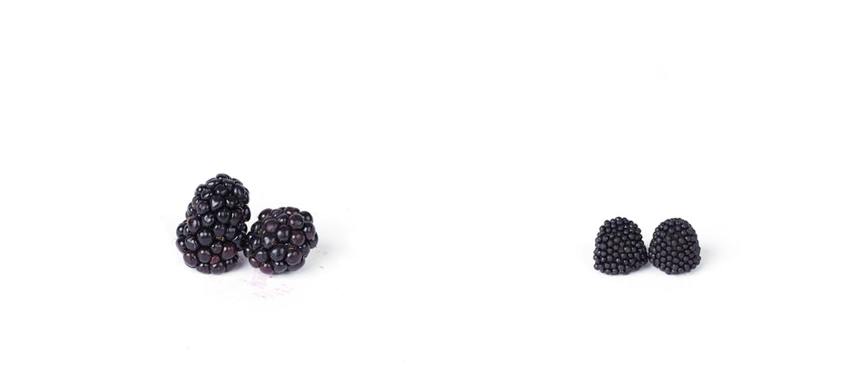 d_blackberries.jpg