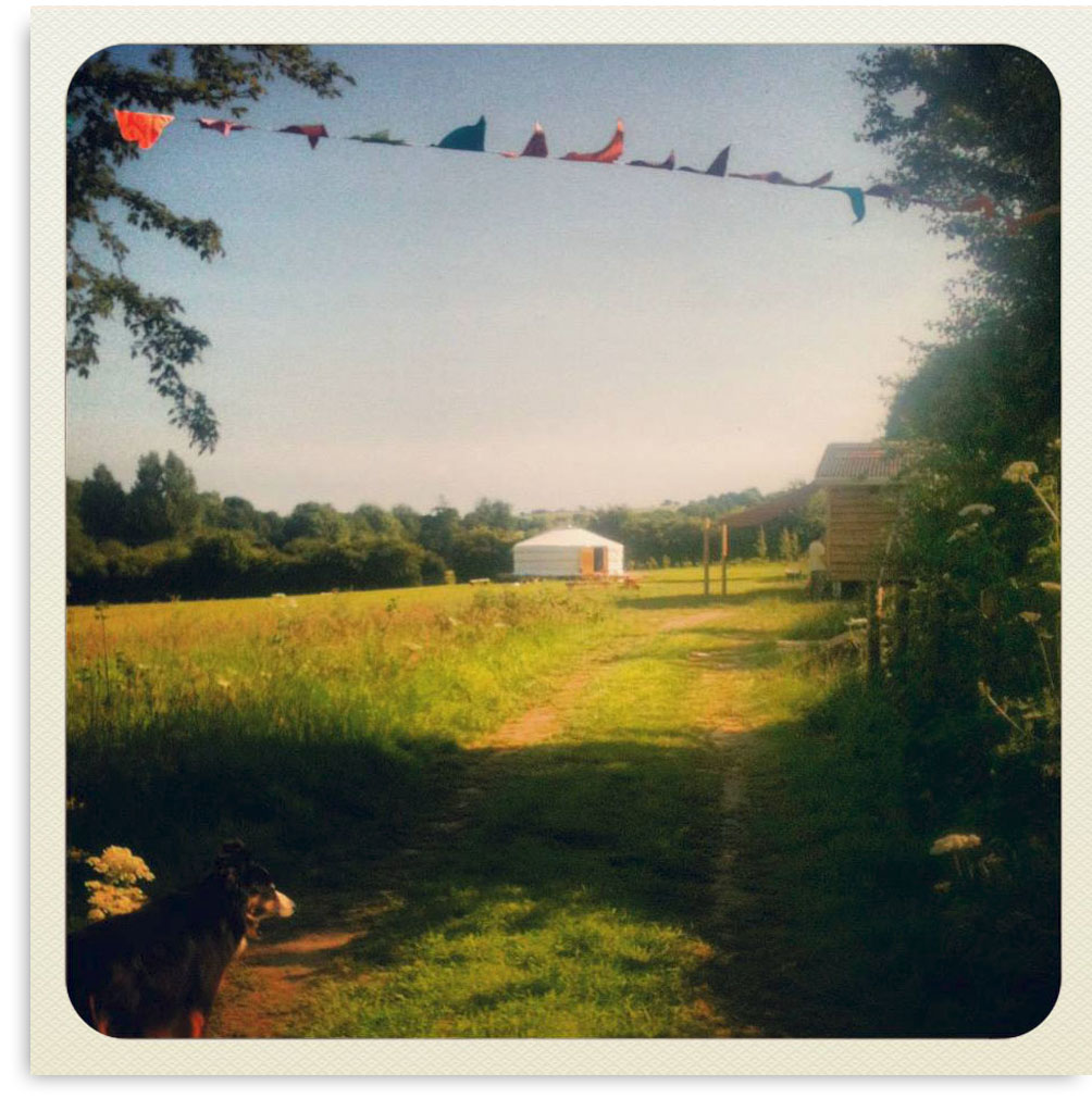 165_Yurts_Dorset_Camping_Glamping_Bell_Tents_Southwest.jpg
