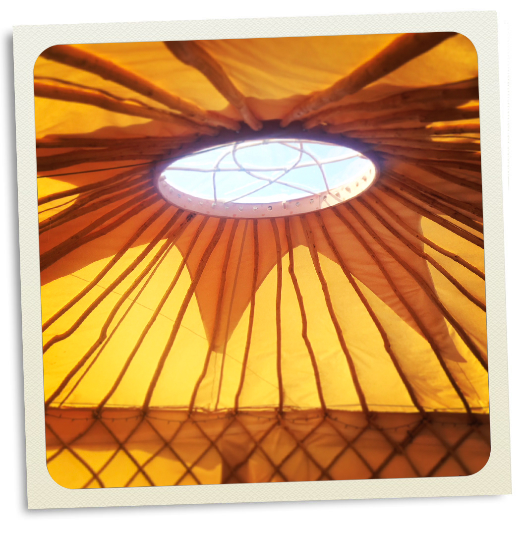 295_Yurts_Dorset_Camping_Glamping_Bell_Tents_Southwest.jpg