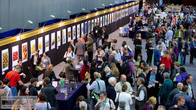 Event Photography Brisbane, Brisbane Conference Photographer at Large BCEC Events 7.jpg