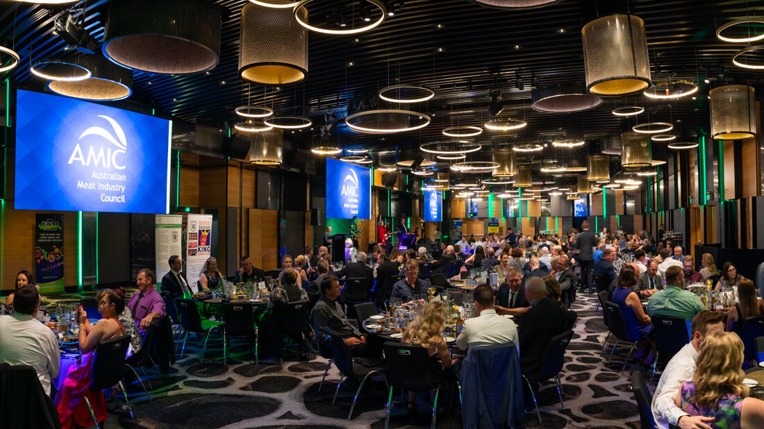Enter the AMIC Awards Dinner 2019 Photo Gallery - Password required.