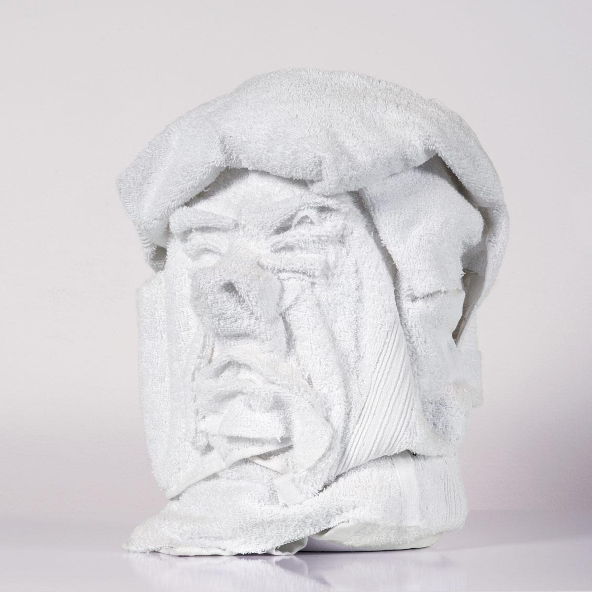 Annelies-Kamen-Trump-Towel-2.jpg