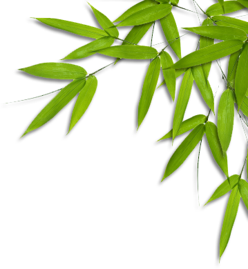 Bamboo Leaves.png