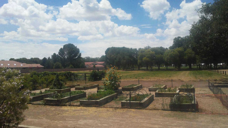 Agricultural Programs — Village of Los Ranchos