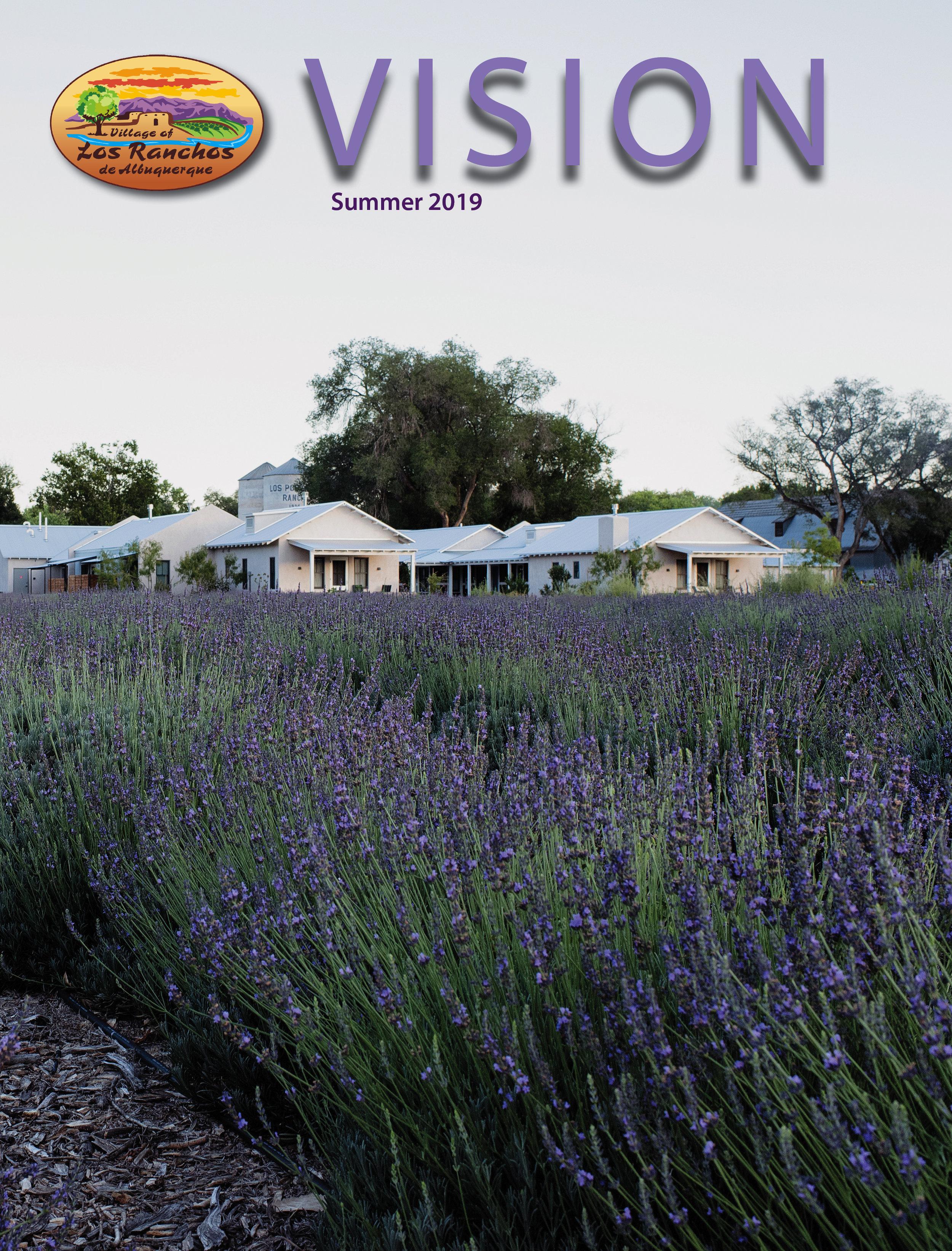 Summer Vision 2019 cvr.jpg