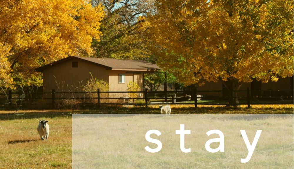 Headers - stay.jpg