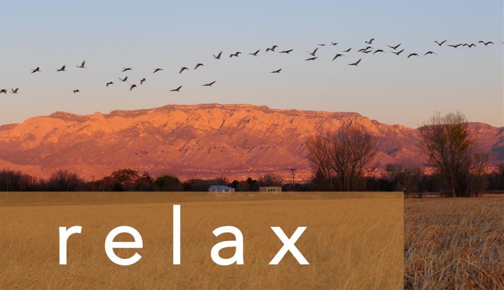 Headers - relax.jpg