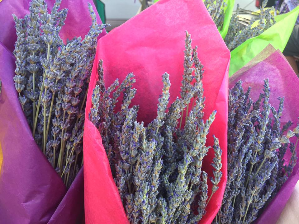 Lavender Events — Village of Los Ranchos