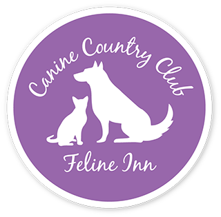 canine country club - temp.png