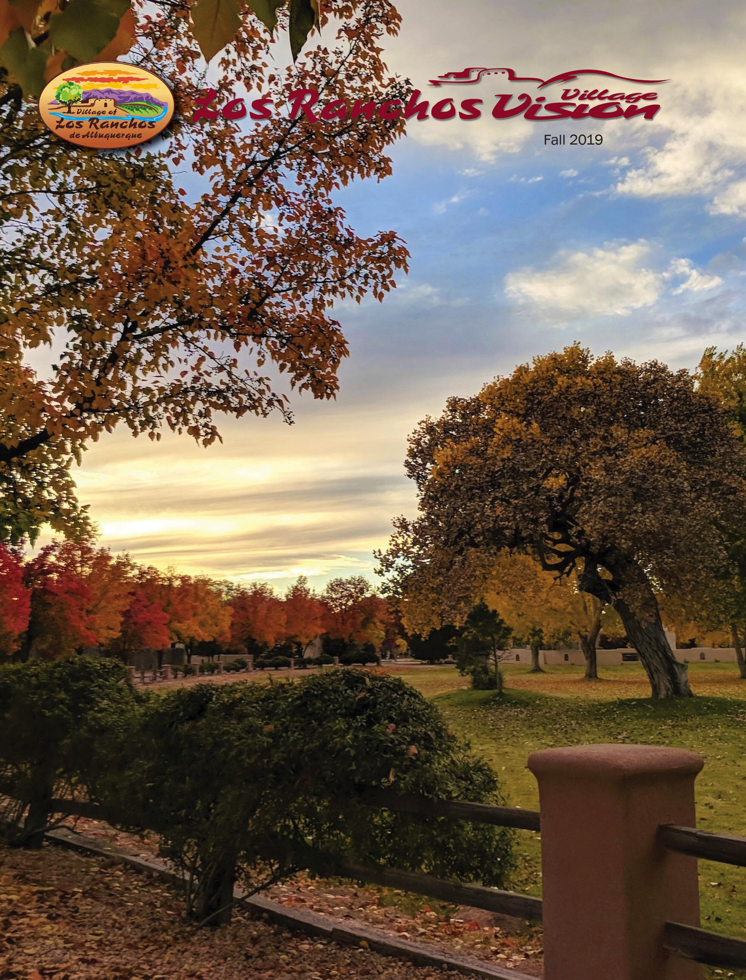 Fall Vision 2019 cvr.jpg