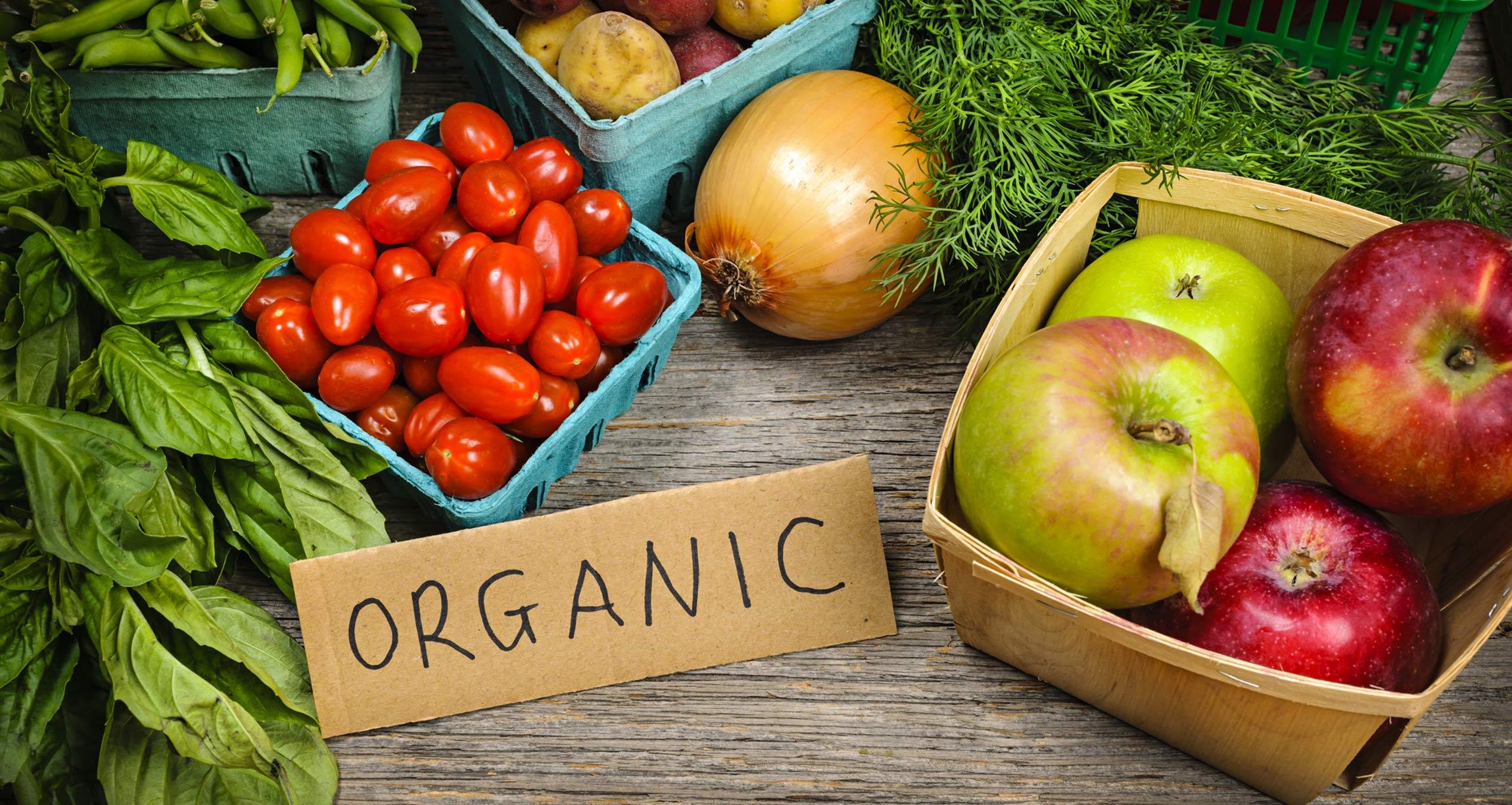 blog-featured-organicandcancer-20181120.jpg