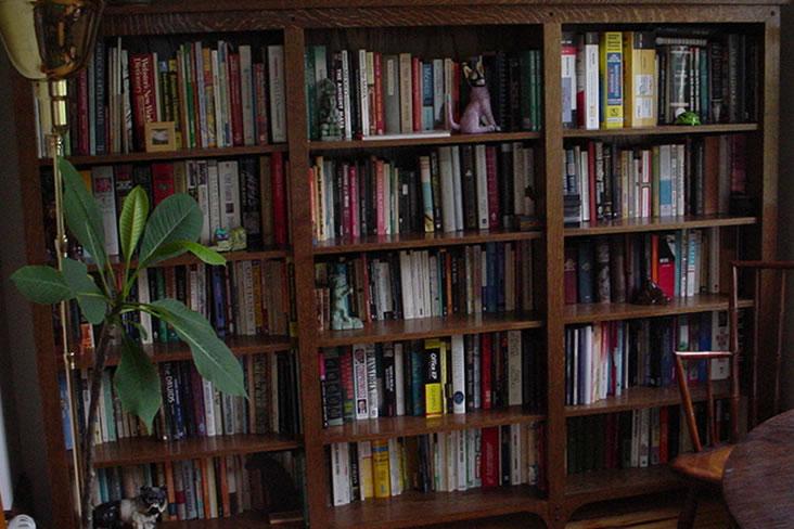 Shelves6.jpg