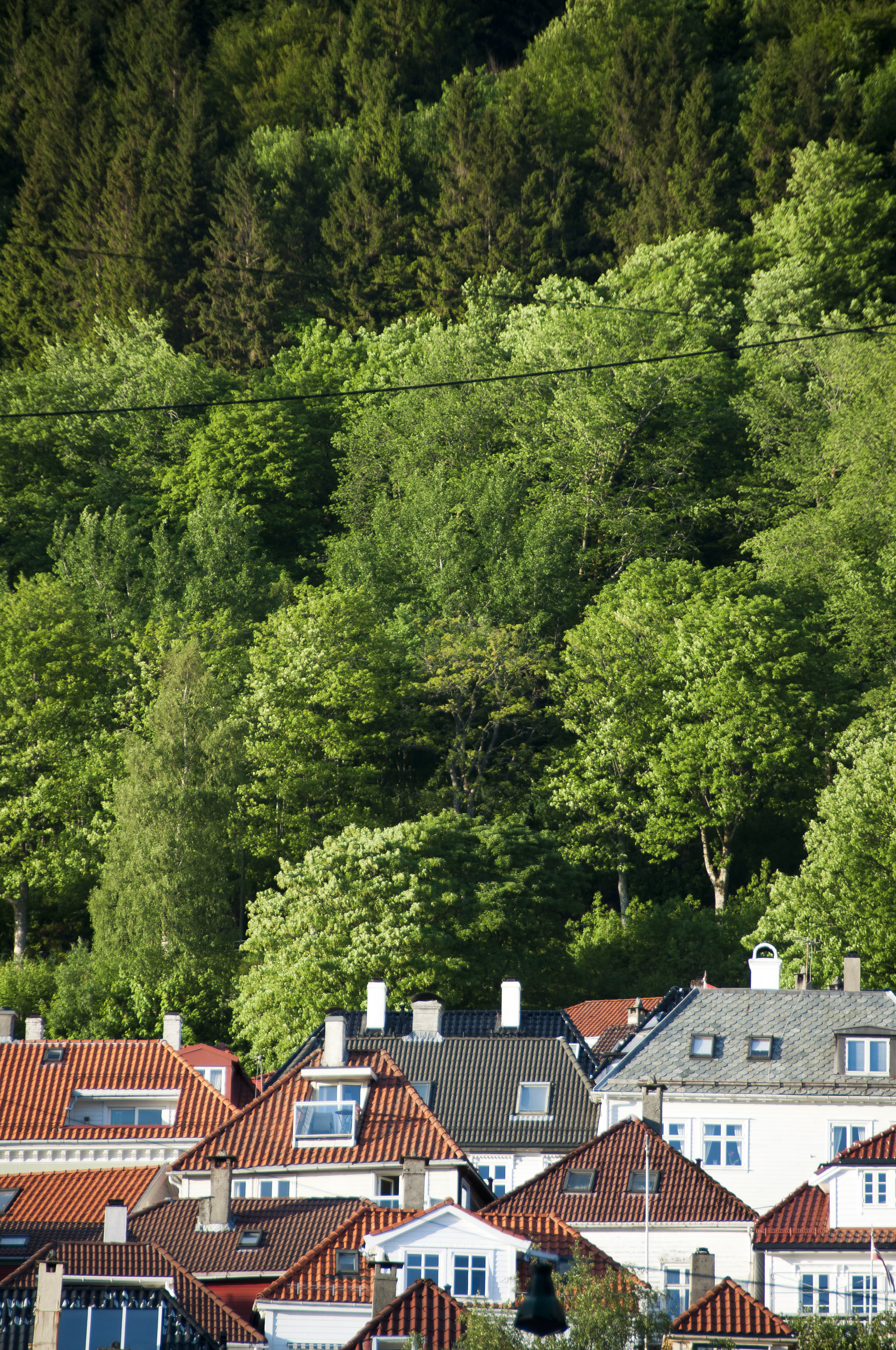 Bergen003.jpg