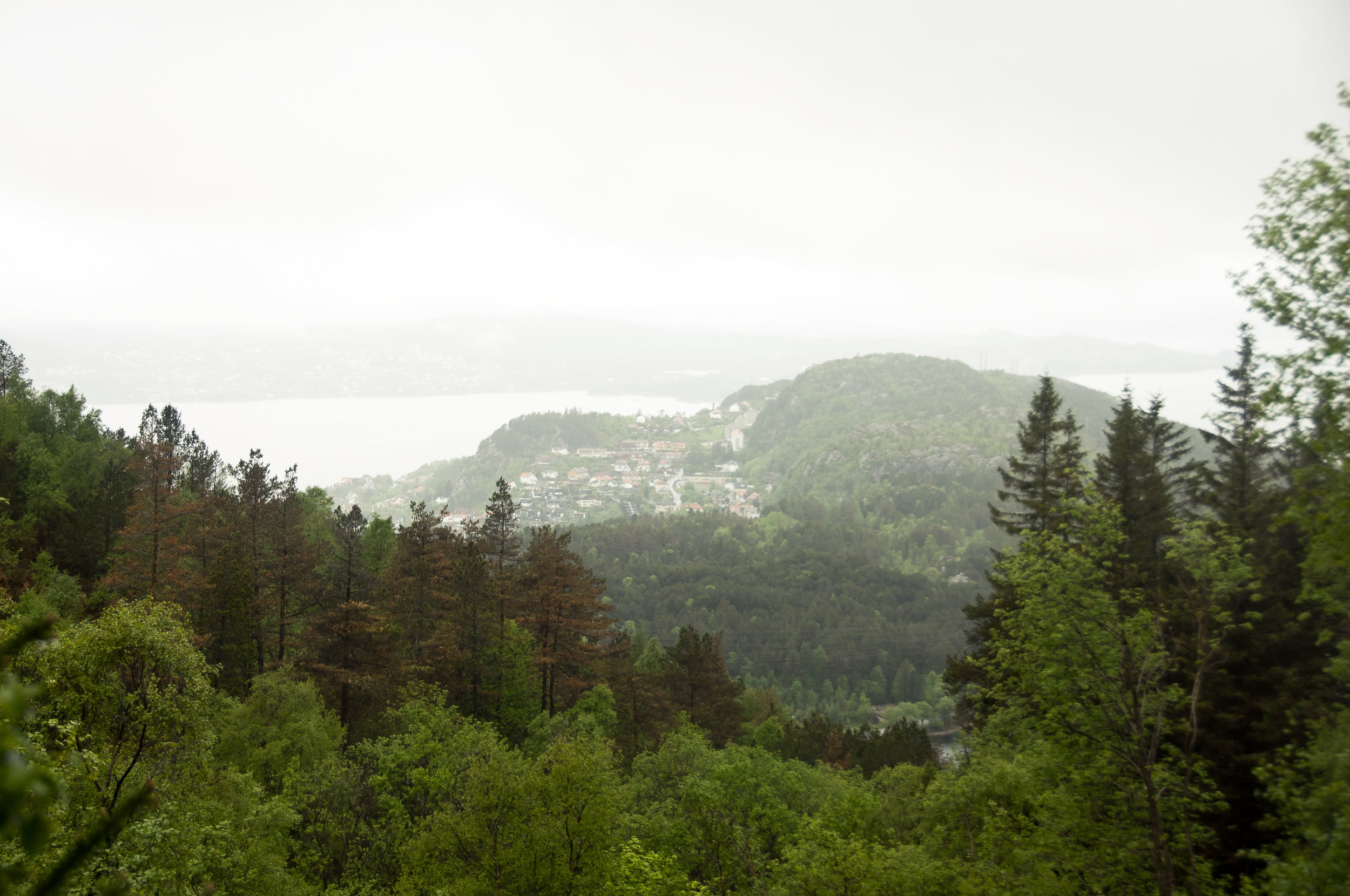 Bergen001.jpg