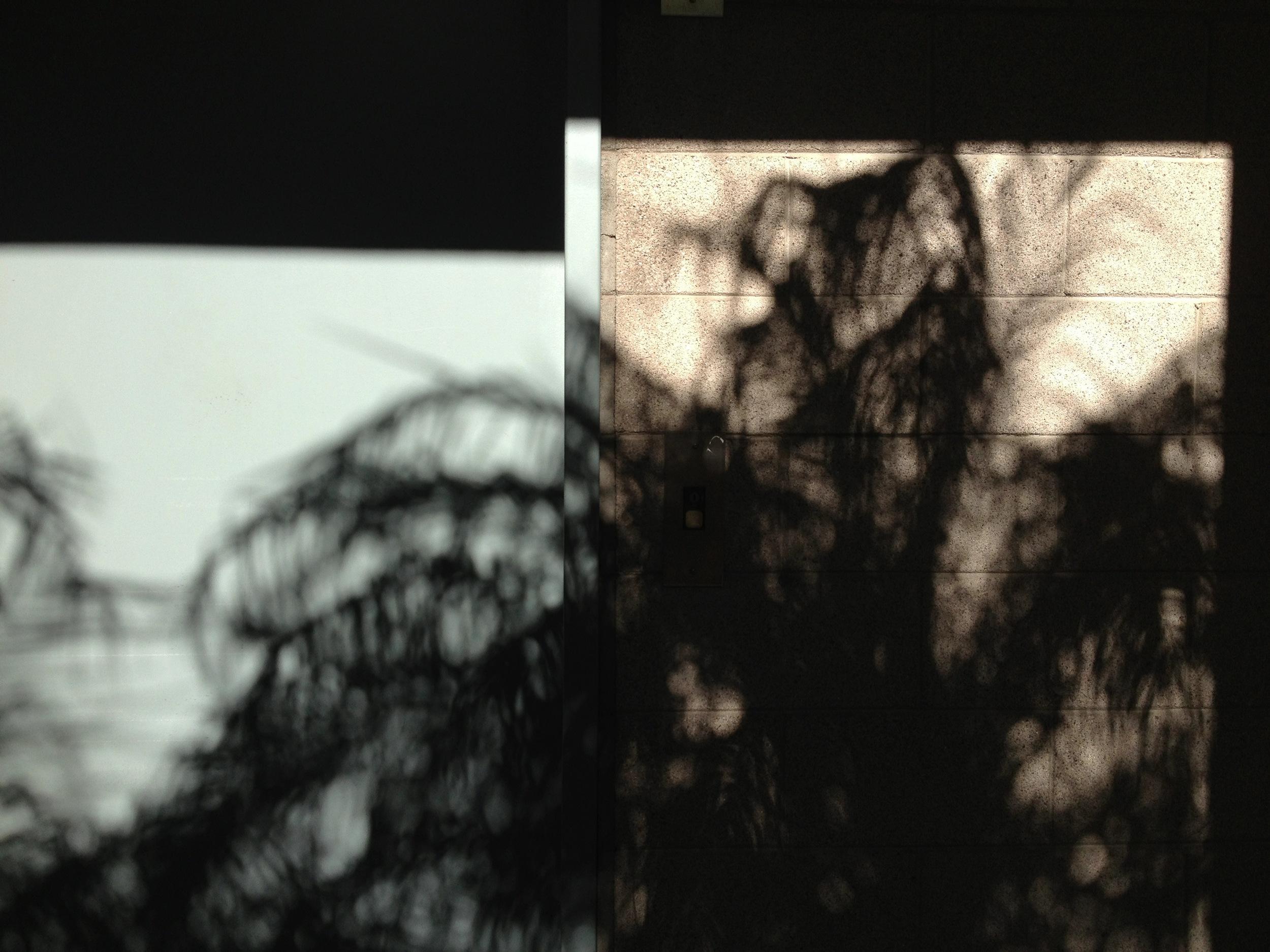 SoCal Shadows