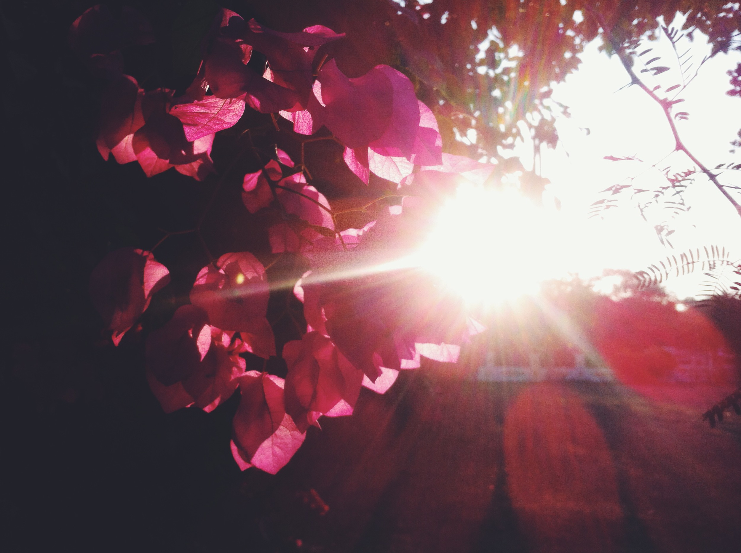 Photo 04-01-14 17 22 04.jpg