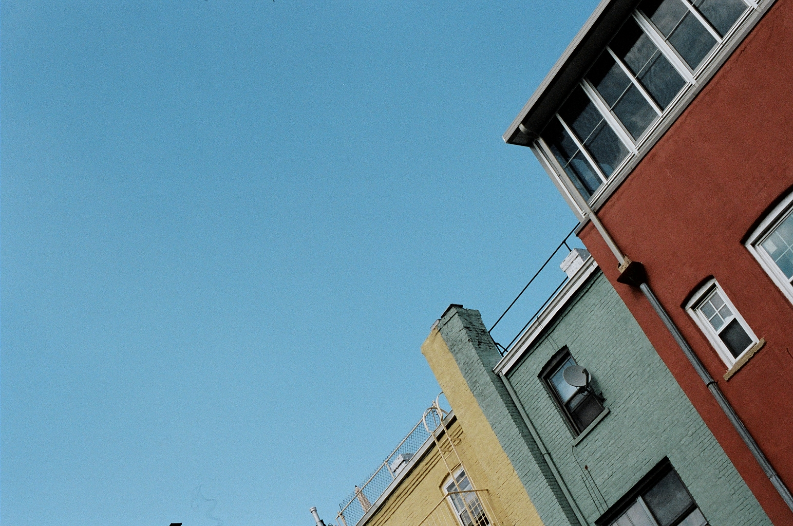 Crown Heights, NY // A new neighborhood to fall in love with.