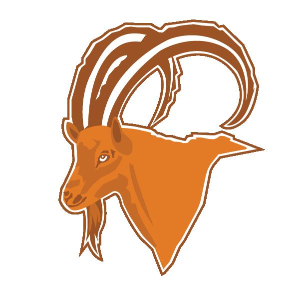 Copy of Ibex Homes LLC. Logo