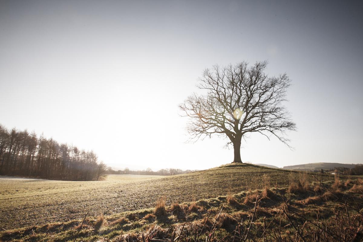 The beautiful Shropshire countryside.