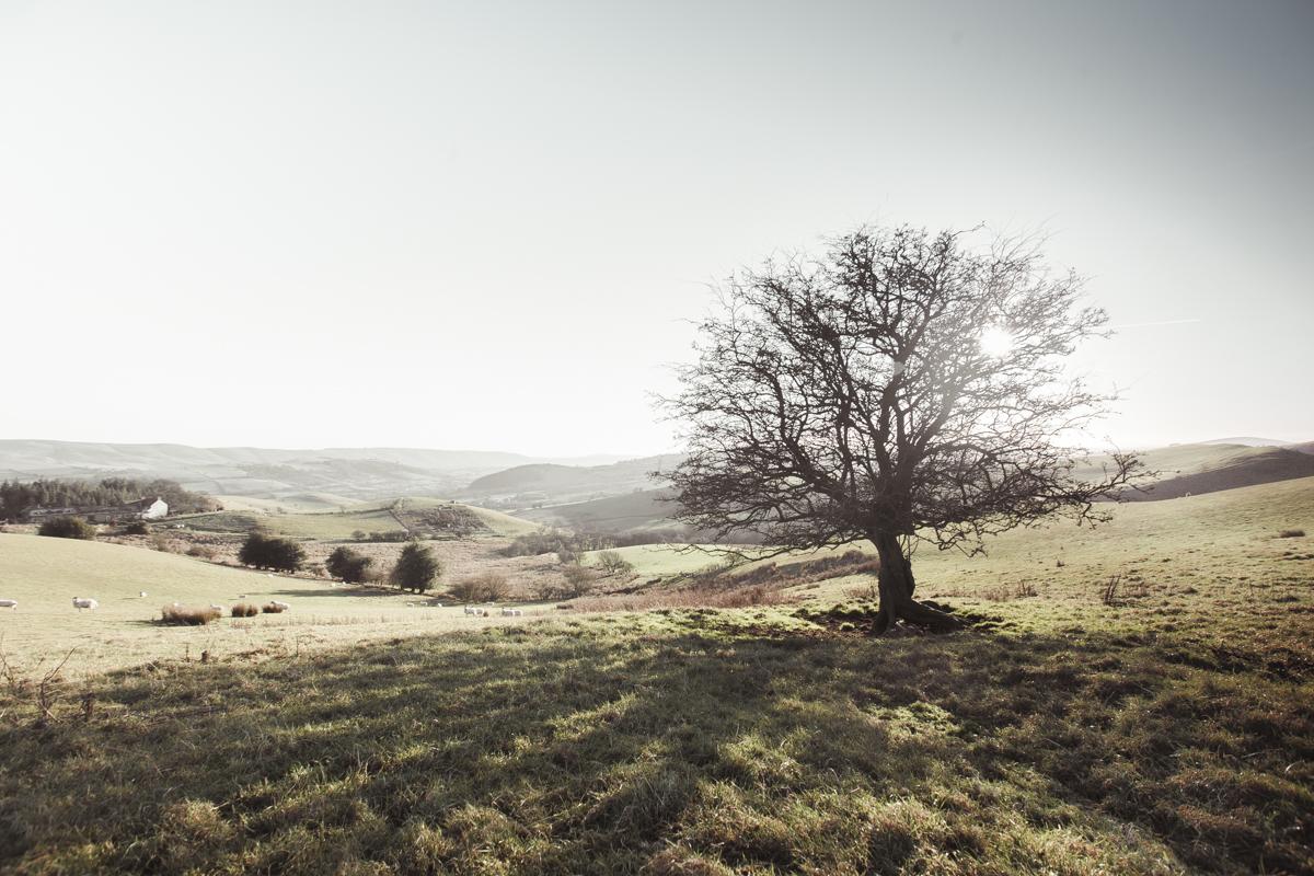 Peaceful Shropshire.
