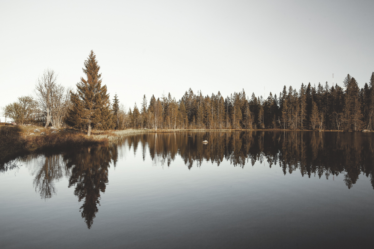 The small lakes you find everywhere have such a calming atmosphere.