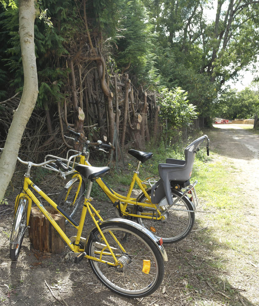 Two of the many bikes, which are free to use.
