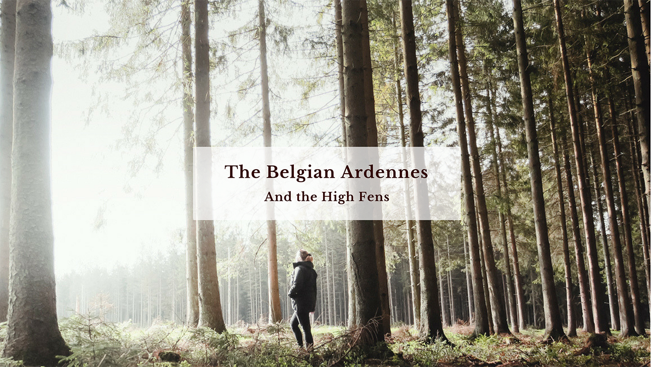 blog_claireonline.nl_Belgian_ardennes_1.png