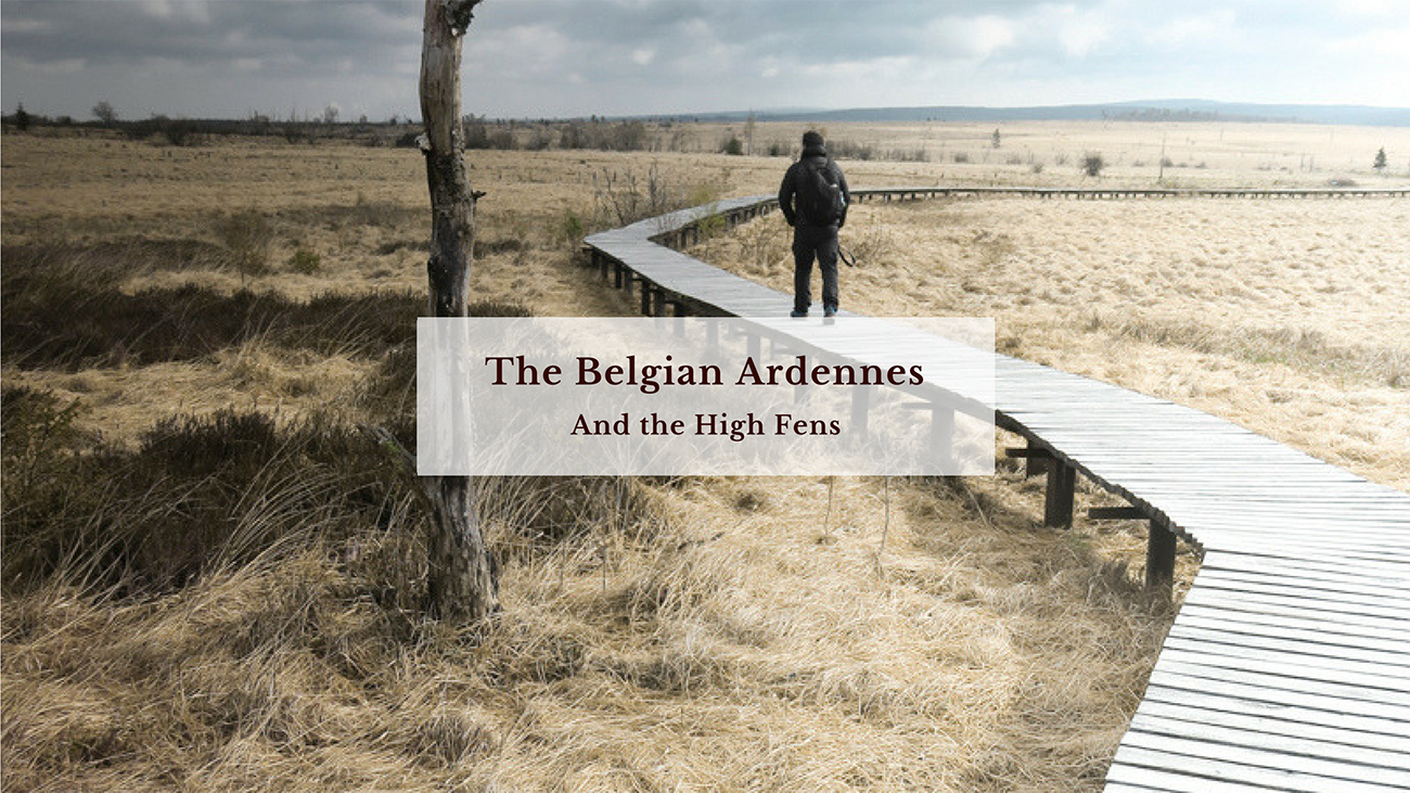 blog_claireonline.nl_Belgian_ardennes.png