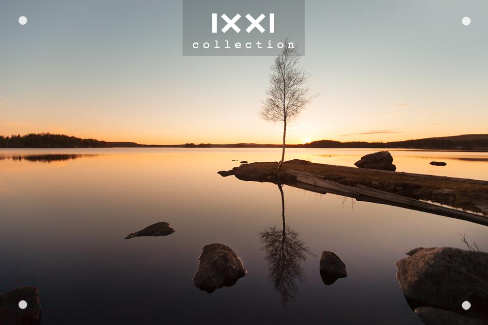 Sweden, Västerbotten - Tree reflection