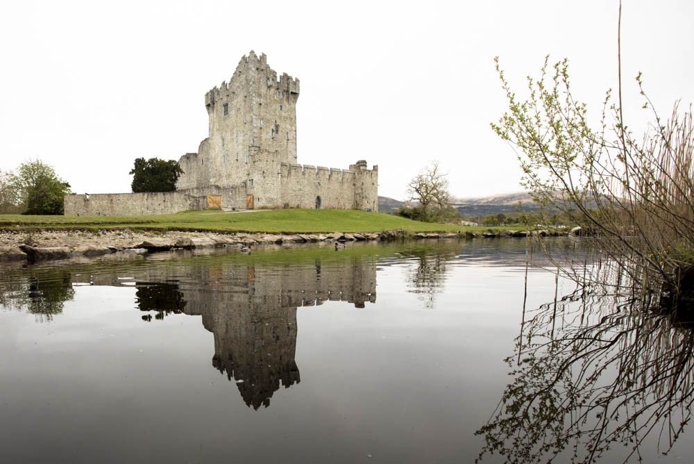 Ross Castle on the edge of Lough Leane. Probably built in the late 15th century by one of the O'Donoghue Ross chieftains