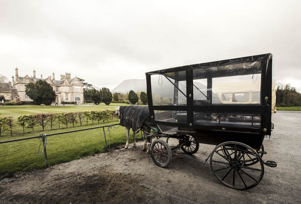 "The horse tour carriage on the Muckross Estate, also known as the ""Jewel of Killarney"""