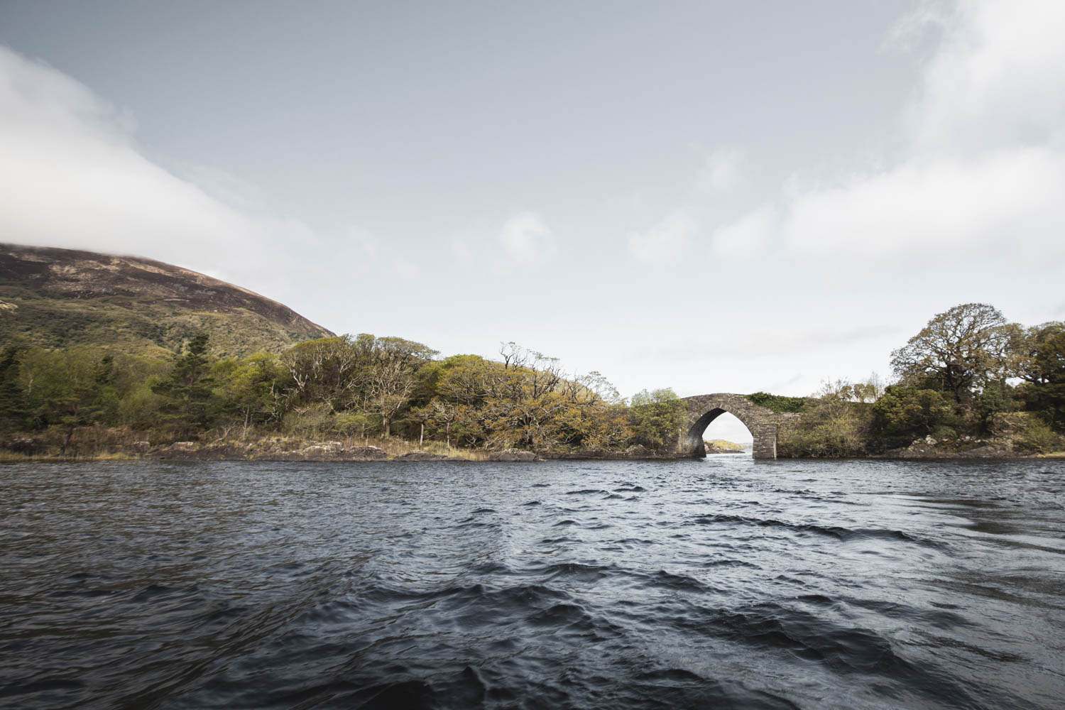 The 18th Century Brickeen Bridge with it's single arch, dividing Muckross Peninsula from Brickeen Island.