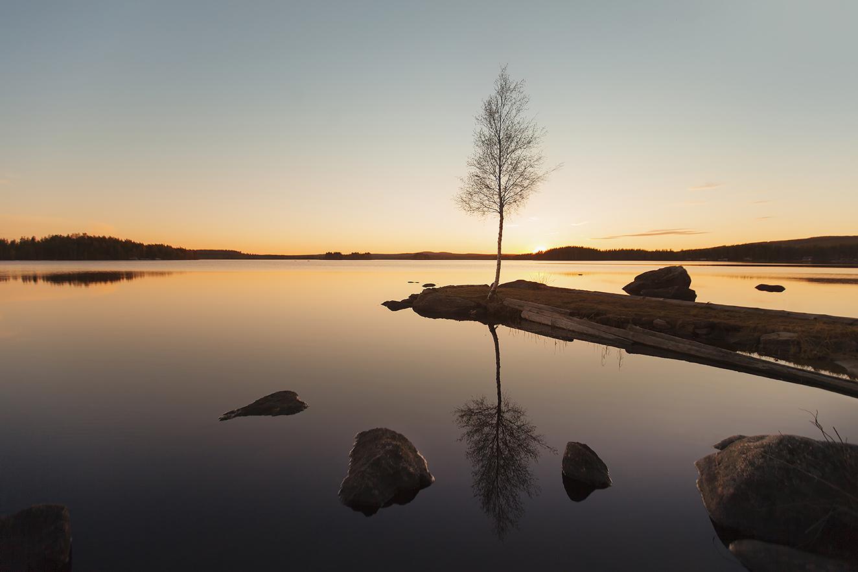 Midsummer Sweden