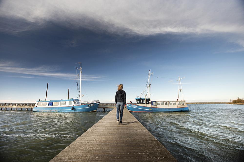 Vissersbootjes_Oostvaardersdijk_ClaireDroppert.jpg