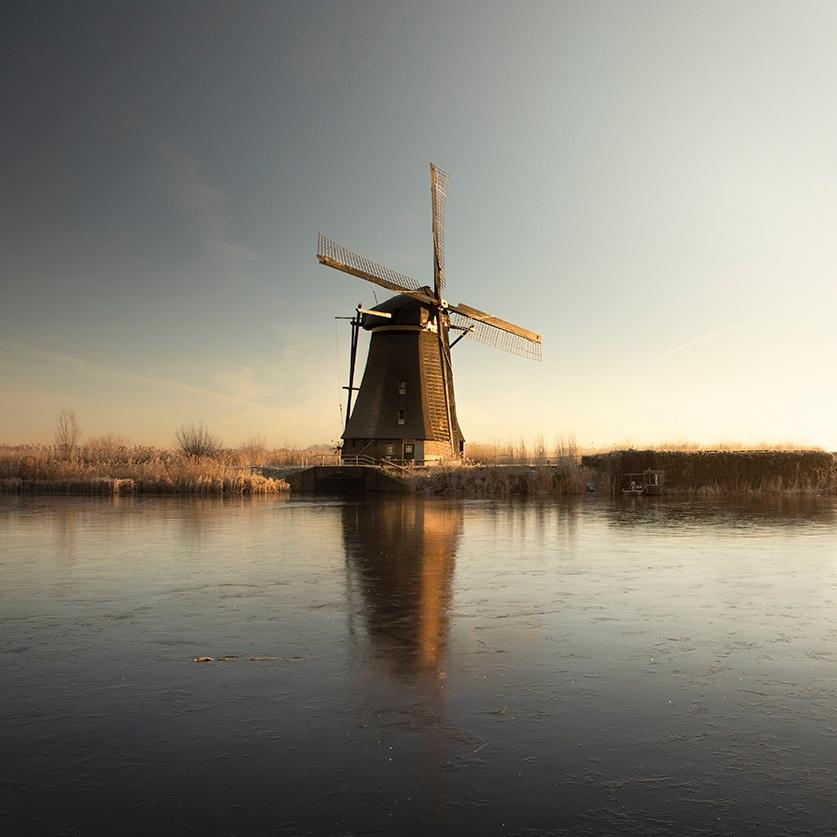 DutchSilenceII_DutchDelight+ClaireDroppert.jpg