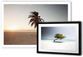 Tropical-fineartprints-claireonline.nl.png